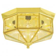 International 5324-10 - Four Light Brass Cage Flush Mount