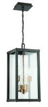 Craftmade Z9921-31 - 4 Light Midnight/Patina Aged Brass Pendant